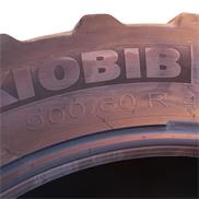 IF900/60R42 180D Demo Michelin AxioBib 5cm Profil